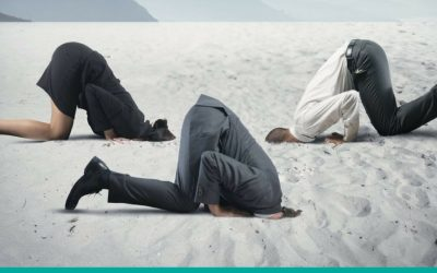 New Data Security regulation is on the way – Don't bury your head in the sand! By Green Giant Consulting