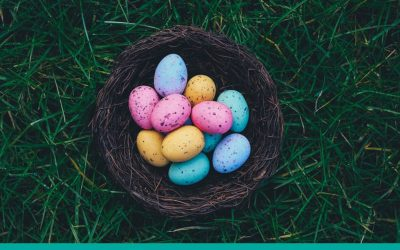 Don't put all your eggs in one basket! {Infographic}