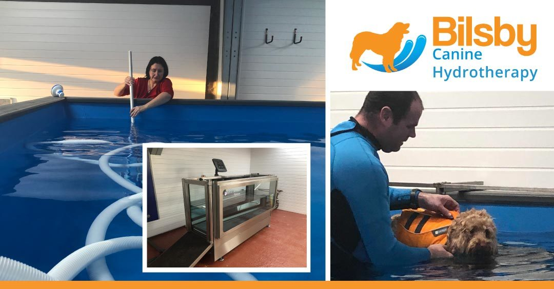 Lincolnshire couple take the plunge with dog hydrotherapy business